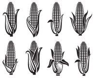 Sistema de imágenes del maíz stock de ilustración