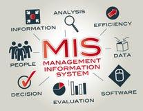 Sistema de informações de gerenciamento, MIS Fotografia de Stock