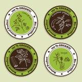 Sistema de insignias orgánicas naturales del producto Imagen de archivo