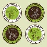 Sistema de insignias orgánicas naturales del producto Fotos de archivo libres de regalías
