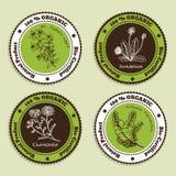 Sistema de insignias orgánicas naturales del producto Foto de archivo
