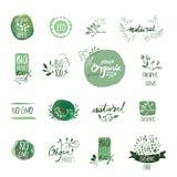 Sistema de insignias y de elementos dibujados mano de la acuarela del alimento biológico stock de ilustración