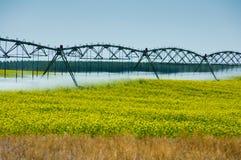 Sistema de irrigação. fotografia de stock