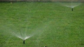 Sistema de irrigação automático molhando do jardim do gramado do pulverizador video estoque