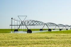 Sistema de irrigação Center do pivô fotografia de stock royalty free