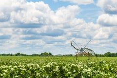 Sistema de irrigação da colheita Fotografia de Stock Royalty Free