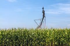 Sistema de irrigação da colheita Foto de Stock