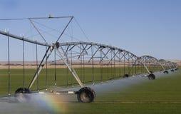 Sistema de irrigação do campo Imagem de Stock