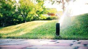 Sistema de irrigación automático con diversas regaderas que riegan el jardín y el césped de la hierba verde durante la tarde cali metrajes
