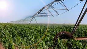 Sistema de irrigación automatizado almacen de video