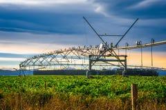 Sistema de irrigación automatizado en agricultura moderna foto de archivo libre de regalías