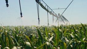 Sistema de irrigación automatizado en el campo almacen de metraje de vídeo
