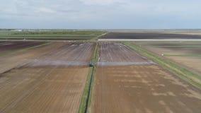 Sistema de irrigación en la región agrícola metrajes