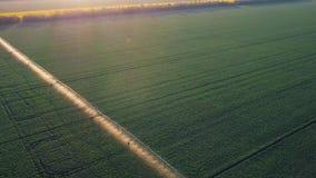 Sistema de irrigación de la cosecha en el campo Abejón video aéreo metrajes