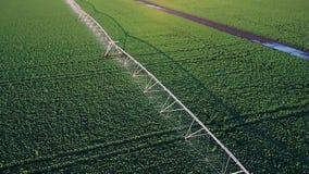 Sistema de irrigación de la cosecha en el campo Abejón video aéreo almacen de video