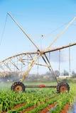 Sistema de irrigación moderno en una granja Fotografía de archivo
