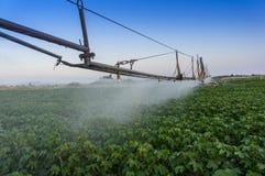 Sistema de irrigación que gira Fotografía de archivo libre de regalías
