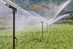 Sistema de irrigación que trabaja en una granja Fotos de archivo