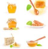 Sistema de la abeja de la miel aislado en un recorte blanco del fondo Fotos de archivo libres de regalías