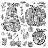 Sistema de la acción de fruta con la cereza, pera, melocotón, manzana, hoja Fotografía de archivo