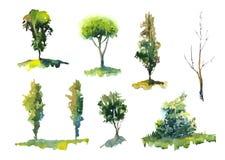 Sistema de la acuarela de árboles Fotografía de archivo libre de regalías