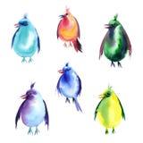 Sistema de la acuarela de pájaros Imagenes de archivo