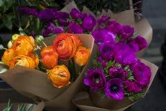 Sistema de la anémona violeta y del ranúnculo anaranjado Fotografía de archivo