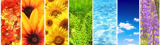 Sistema de la bandera con los elementos de la naturaleza Foto de archivo