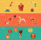 Sistema de la bandera de los iconos del perro Fotografía de archivo libre de regalías