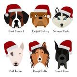 Sistema de la cabeza del ` s de 6 perros Diseño plano pets Perritos lindos Icono o logotipo Personaje de dibujos animados libre illustration