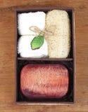 Sistema de la caja del jabón del balneario Fotos de archivo libres de regalías