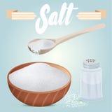 Sistema de la coctelera de sal del vector, del cuenco de madera lleno y de la cuchara Sal dispersada en la tabla Imagenes de archivo