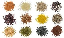Sistema de la colección de granos de cereal y de montones de las semillas fotos de archivo