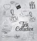Sistema de la colección del té. Carbón. Imagenes de archivo