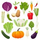 Sistema de la comida de las verduras Ilustración del vector Fotos de archivo libres de regalías