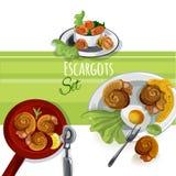 Sistema de la comida del vector de Escargout Imagen de archivo libre de regalías