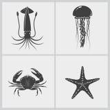 Sistema de la criatura marina ilustración del vector