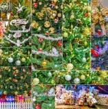 Sistema de la decoración colorida de los árboles de navidad Imagenes de archivo