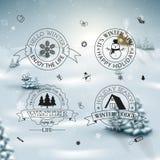Sistema de la decoración del invierno del diseño caligráfico y tipográfico Foto de archivo libre de regalías
