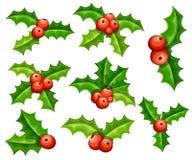 Sistema de la decoración plana del muérdago Bayas y hojas rojas del verde Ornamento de la Navidad Ejemplo del vector aislado en e Fotografía de archivo