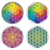 Sistema de la flor de los símbolos de la vida - colores del arco iris Fotos de archivo libres de regalías
