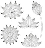 Sistema de la flor de Lotus libre illustration