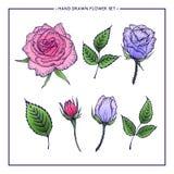 Sistema de la flor de rosas y de hojas Fotografía de archivo