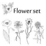 Sistema de la flor del bosquejo Foto de archivo libre de regalías