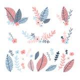 Sistema de la flor del diseño Ejemplo con la hoja del ramo y floral y el brunch Decoración natural rosada y azul de la colección