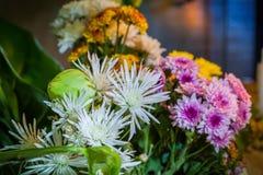 sistema de la flor que ruega para dios Fotos de archivo libres de regalías
