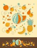 Sistema de la fruta Imagen de archivo libre de regalías