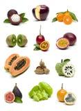 Sistema de la fruta aislado en el fondo blanco fotografía de archivo libre de regalías