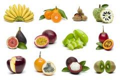 Sistema de la fruta tropical aislado en el fondo blanco imagen de archivo libre de regalías