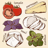 Sistema de la historieta de los ingredientes de las lasañas Imagen de archivo